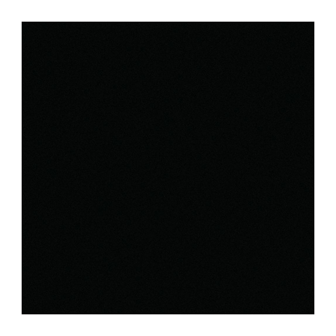 Black Black Swatch