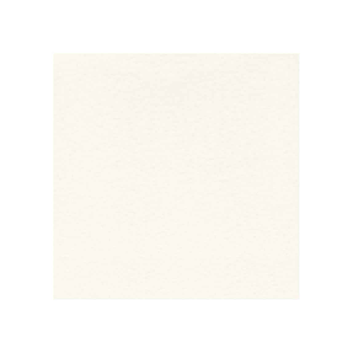 White White Swatch