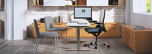 Private office space with Ceres desk chair