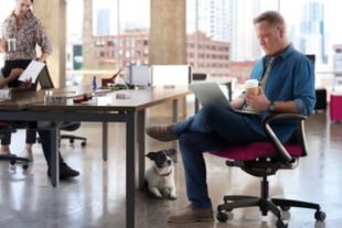 Open office room scene with Ignition task chair, Empower desks, and two people sitting in chairs at desk with dog on the floor