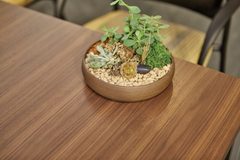 Detail photo of Flock Mini with topper table top with a small pot of succulents placed on top of table highlighting wood accents in the home